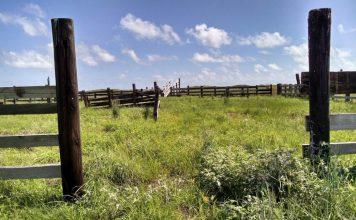 Abandoned Ranch Agenda 21/30 pxby